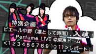 [特集]<br />ピエール中野(凛として時雨)、入魂! Perfume LIVE @東京ドーム「1 2 3 4 5 6 7 8 9 10 11」レポート!