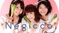 [特集]<br />百花繚乱のローカル・アイドル・シーンから飛び出した新潟の一番星、Negiccoに注目!
