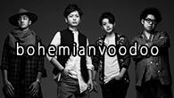[インタビュー] 研ぎ澄まされた4人のアンサンブル——ライヴ・ベスト・アルバム『echoes』をリリースしたbohemianvoodoo