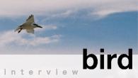 [インタビュー]<br />普段言えないことを、歌に託して——birdの新作『MY LOVE』は、夏のラブ・ソングを収録したカヴァー集