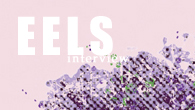 """[インタビュー]<br />【イールズ interview】欲望(第一部)、喪失(第二部)に続く三部作完結編のテーマは""""祝杯""""——エレクトロをフィーチャーした""""何でもあり""""なイールズの新作"""