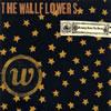 ザ・ウォールフラワーズ / ブリンギング・ダウン・ザ・ホース[+2] [再発] [CD] [アルバム] [1997/09/22発売]