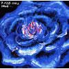 白鳥マイカ / 花園 [廃盤] [CD] [アルバム] [2002/04/24発売]