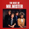 Mr.ミスター / ベスト・オブ・Mr.ミスター [CD] [アルバム] [2002/10/02発売]