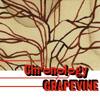 グレイプバイン / Chronology-a young person's guide to Grapevine-