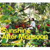 川口大輔 / Sunshine After Monsoon [CCCD] [廃盤]