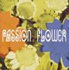 T-SQUARE / Passion Flower
