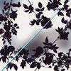椿屋四重奏 / 紫陽花 / 螺旋階段