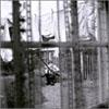 ポール・マッカートニー / ケイオス・アンド・クリエイション・イン・ザ・バックヤード〜裏庭の混沌と創造
