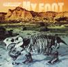 ザ・ピロウズ / MY FOOT