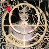 エニグマ - ア・ポウステリオーリ [CD]