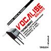 VOCALISE竹内正実(テルミン) [CD]