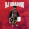 DJシャドウ / ジ・アウトサイダー [CD] [アルバム] [2006/09/27発売]