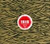 アイシス / イン・ジ・アブセンス・オブ・トゥルース [CD] [アルバム] [2006/10/06発売]