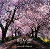 白鳥英美子&トワ・エ・モワ - 旅立ちの日に [CD]