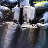 メビウス&プランク / マテリアル [紙ジャケット仕様] [限定] [CD] [アルバム] [2007/02/25発売]