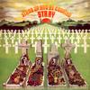 ストレイ / 太陽の墓標 [紙ジャケット仕様] [CD] [アルバム] [2007/03/21発売]