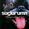 sugiurumn / What time is summer of love?