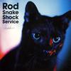 浅井健一 / Rod Snake Shock Service [紙ジャケット仕様] [CD] [アルバム] [2007/06/27発売]