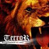TERROR / Rhythm Amongst The Chaos [CD] [アルバム] [2007/11/05発売]