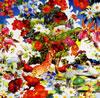 オレンジペコー / ワイルド フラワーズ [CD+DVD] [限定] [CD] [アルバム] [2007/11/21発売]
