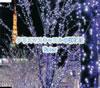 Water / クリスマスキャロルの頃には [CD] [シングル] [2007/11/14発売]