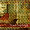 ホドリーゴ・マラニャォン / ボルダード [CD] [アルバム] [2007/12/14発売]