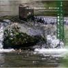一噌幸弘・しらせ / よしのぼり [CD] [アルバム] [2008/07/25発売]