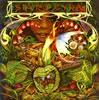 スパイロ・ジャイラ / モーニング・ダンス [SHM-CD] [限定] [アルバム] [2008/10/22発売]