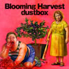 dustbox / Blooming Harvest