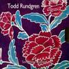 トッド・ラングレン / サムシング / エニシング?(ハロー・イッツ・ミー) [紙ジャケット仕様] [2CD] [SHM-CD] [限定] [アルバム] [2009/03/18発売]