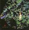 新居昭乃 / ソラノスフィア [CD] [アルバム] [2009/04/29発売]