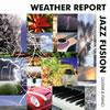 ウェザー・リポート・ジャズ・フュージョン ギター&ピアノ