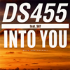 DS455 / INTO YOU [限定] [CD] [シングル] [2009/06/30発売]