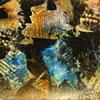 コンヴァージ / アックス・トゥ・フォール [紙ジャケット仕様] [CD] [アルバム] [2009/10/21発売]