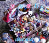 HALCALI / 浪漫飛行 [CD] [シングル] [2010/09/15発売]