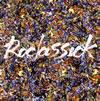 BIGMAMA / Roclassick [CD+DVD]