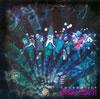 SoundWitch / グロテスカ [CD] [アルバム] [2010/10/13発売]