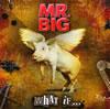 MR.BIG / ホワット・イフ… [デジパック仕様] [CD] [アルバム] [2010/12/15発売]
