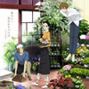 Aimer(エメ) / あなたに出会わなければ〜夏雪冬花(かせつとうか)〜 / 星屑ビーナス [限定]