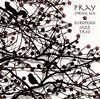 ヨーロピアン・ジャズ・トリオ / 祈り〜春の海 [廃盤] [CD] [アルバム] [2012/10/17発売]