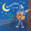 山森大輔 / Wonderful World