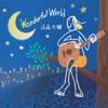 山森大輔 / Wonderful World