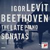 ベートーヴェン:後期ピアノ・ソナタ集 レヴィット(P) [2CD] [Blu-spec CD2] [アルバム] [2013/11/27発売]