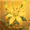 DRAGON ASH / Lily [紙ジャケット仕様] [限定] [CD] [シングル] [2013/11/27発売]