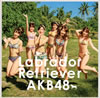 AKB48 / ラブラドール・レトリバー(Type K) [CD+DVD] [限定]