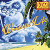 KNOCK OUT MONKEY / Wonderful Life