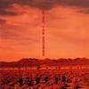 ザ・スクェア / イエス、ノー。 [SA-CD] [CD] [アルバム] [2000/06/07発売]