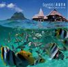 GONTITI / 南国音楽〜リゾート・ミュージック・シリーズ