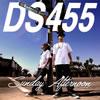 DS455 / Sunday Afternoon [CD] [アルバム] [2014/09/03発売]